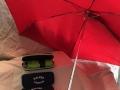 Umbrella